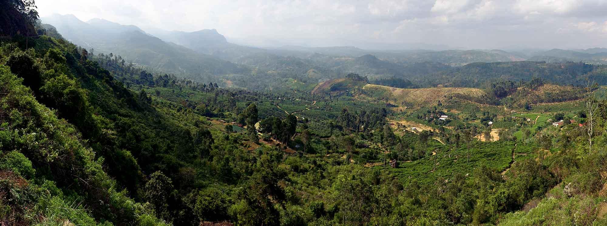 Idalgashina scenery. Foto: KennyOMG CC-BY-SA-4.0