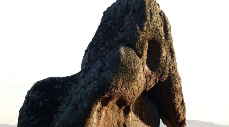 Главата на слонот од североисток