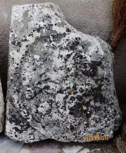 Фрагмент од мермерна плоча со оштетен релјеф
