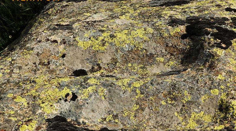 Скали во карпа на локалитетот