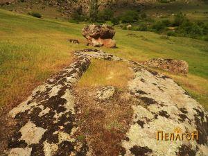 Винарник во карпа во близина