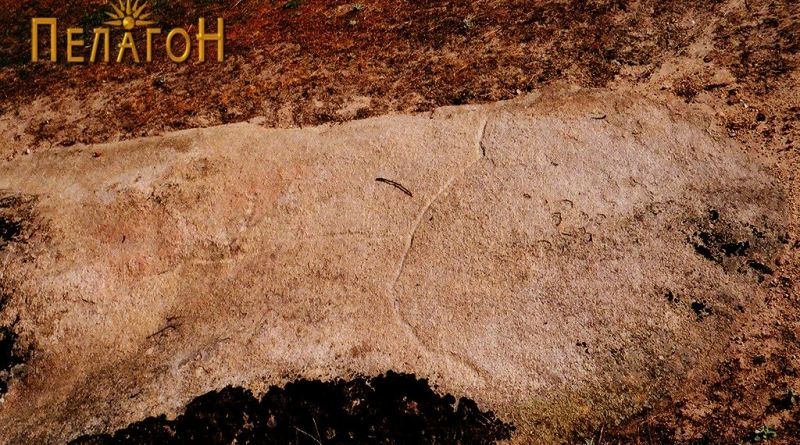Плочеста површина на карпа - дел од просторот околу винарникот