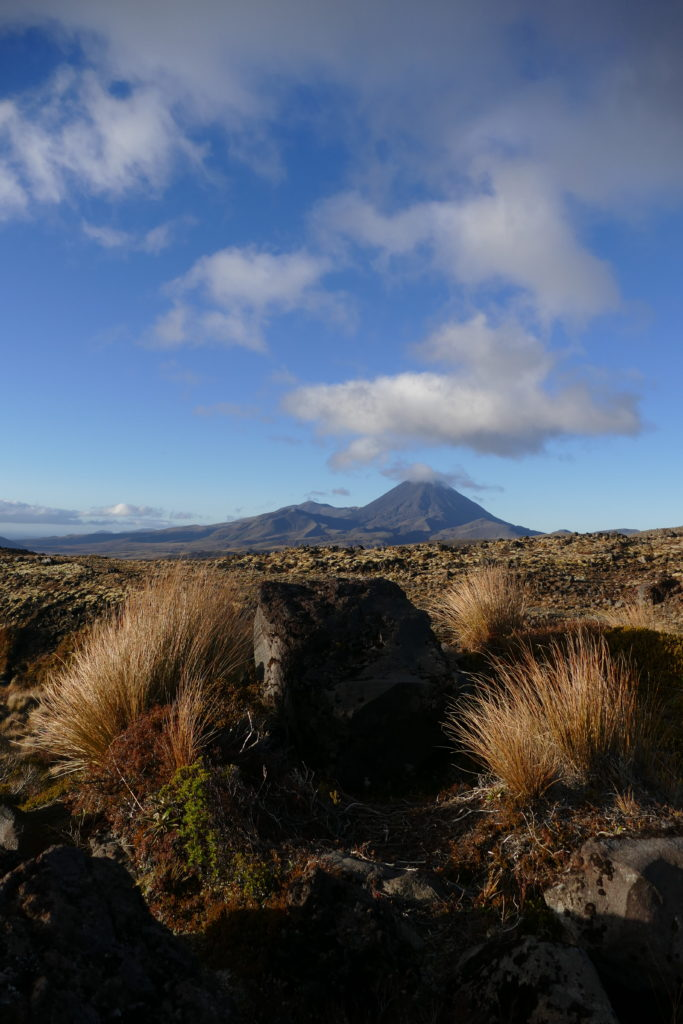 Ngauruhoe, viewed from a little lower down on Ruapehu's flank.
