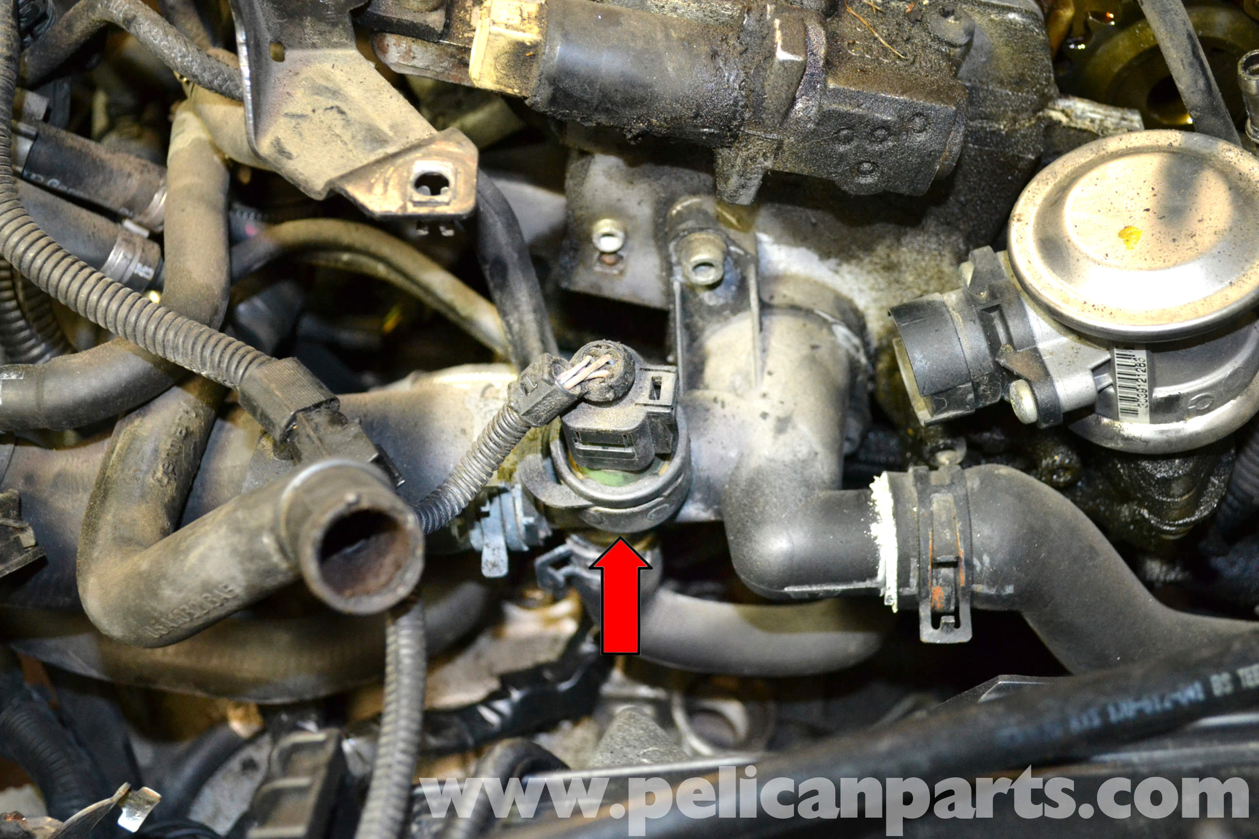 vw golf gti mk2 wiring diagram stratocaster 2001 jetta coolant sensor replace diagram.html | autos post