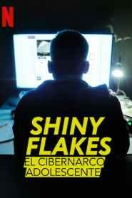 Shiny Flakes: El cibernarco adolescente
