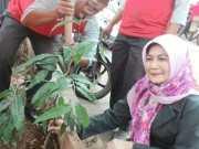 Penghijauan Pasar Bandeng Kota Tangerang