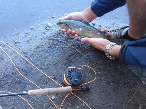 pescare-a-Pellizzano