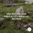 Não testemunhe, pregue o Evangelho da Cruz