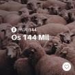 #PADD144: Os 144 Mil