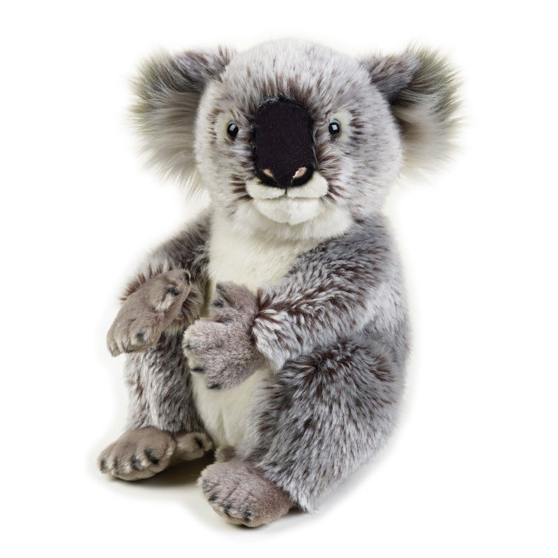 Peluche Koala 26 cm peluches National Geographic