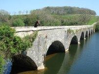 8-arch-bridge-Lily-ponds-large