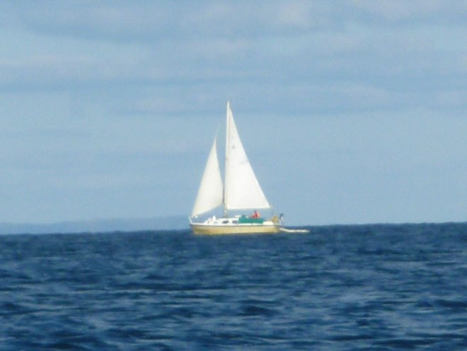 Sailing in the Pembrokeshire Coast National Park