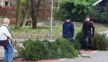 Ophalen Kerstbomen De Digitale Stad Nieuwegein