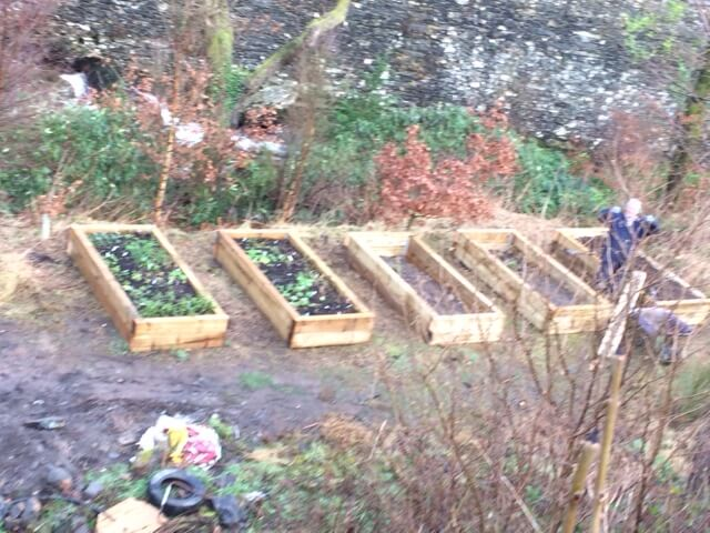 Three new beds (on the right) have been added to the two Mike built last autumn