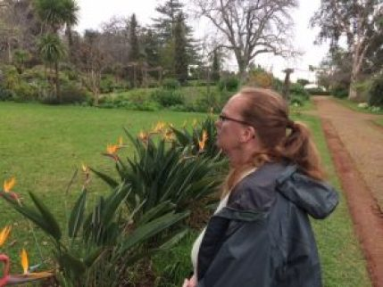 Carrie in the Palheiro gardens, admiring the flora...