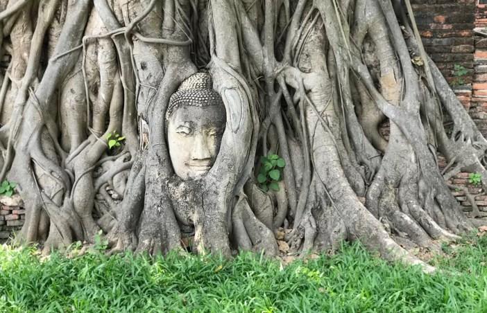 Bate-volta para Ayutthaya: guia rápido e prático