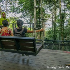 Swing Chair Penang Reclining Beach With Footrest 5 Reasons Why You Should Visit The Habitat Hill Insider S Giant Swings Are Really Something Else
