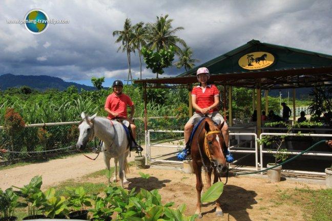 Tim and Chooi Yoke at Countryside Stables Penang