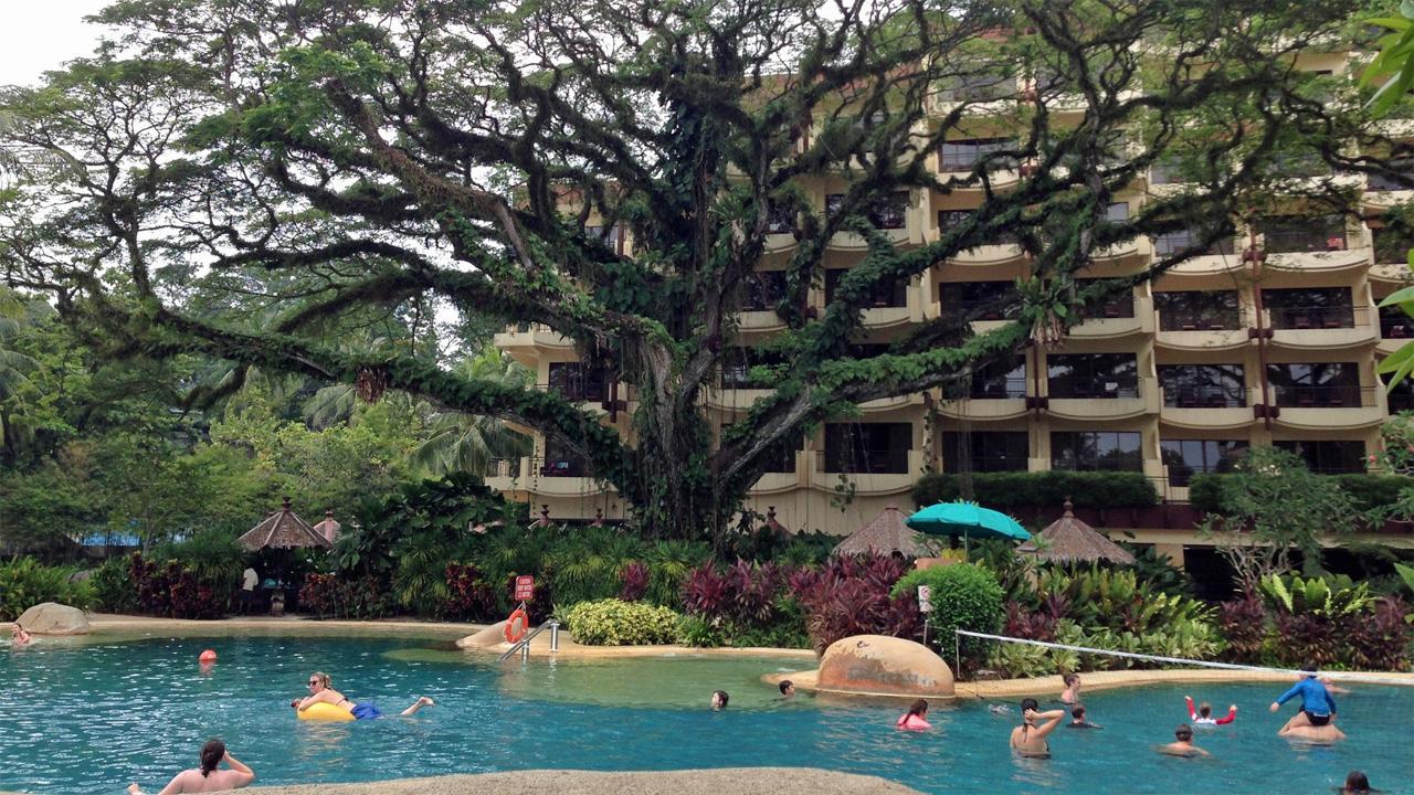 Rasa-Sayang-Resort-Penang-Swimming-Pool-Partly-Shaded-by-a-Giant-Tree