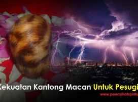 Kekuatan Kantong Macan Untuk Pesugihan Sejati