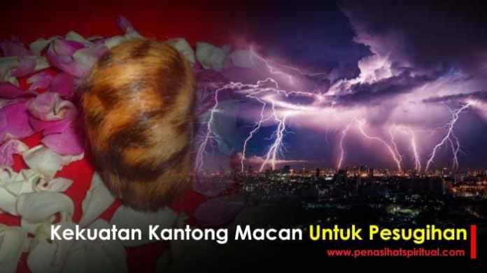 kekuatan kantong macan