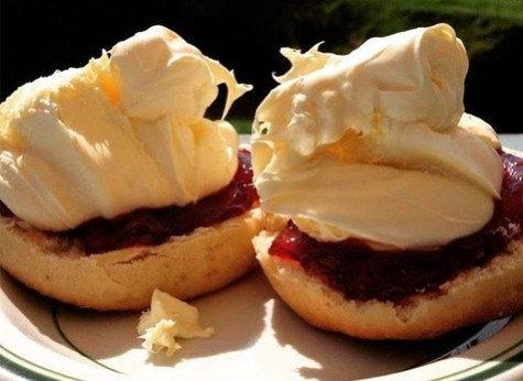 Delicious Cornish cream teas in our cafe