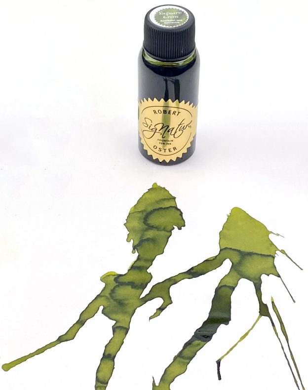 Pen chalet exclusive robert oster saguaro green ink review and giveaway