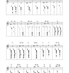 clarinet diagram [ 800 x 1734 Pixel ]