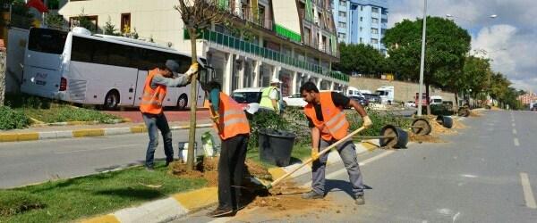 Çevre Koruma ve Kontrol Müdürlüğü'nden Pendik'e Yeşil Yatırım