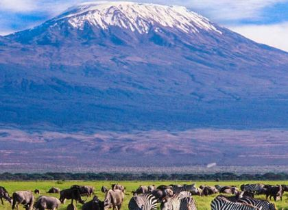 Mt Kilimanjaro view from Amboseli National Park Safari