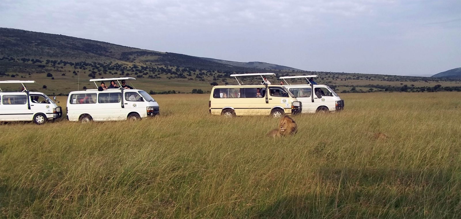 Kenya Safaris and Tours   Penfam Tours and Safaris Tours Caravan