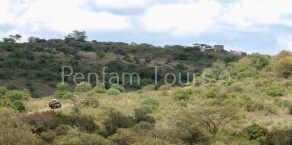 Nairobi National Park your on the Penfam tour and Safaris 4x4 tour van
