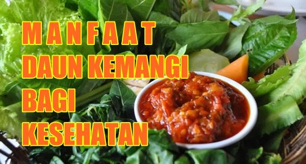 Image result for daun kemangi