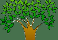 Pengertian Lingkungan Hidup Dan Komponennya
