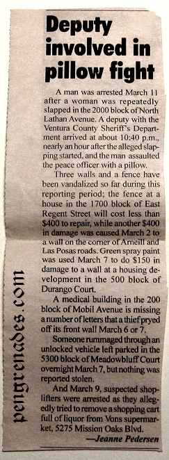 newspaper clipping listing local crime in Camarillo CA