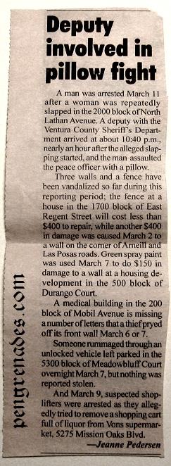 newspaper clipping listing local crime in Camarillo CA