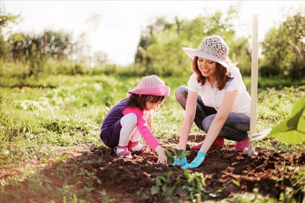 child and mother plant in garden