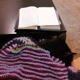 Test Knit Shawl