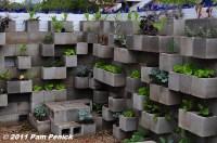 Edible wall! Cinderblock wall vegetable garden wows at Big ...