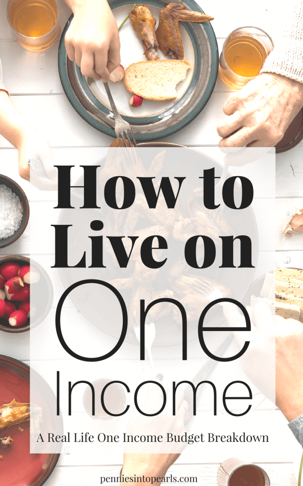 I'll show you how we make our one income family budget work to help you find ways to start budgeting on one income! Motivation to start living on one income. Tips we learned when we had a major financial set back with our family income and family budget.