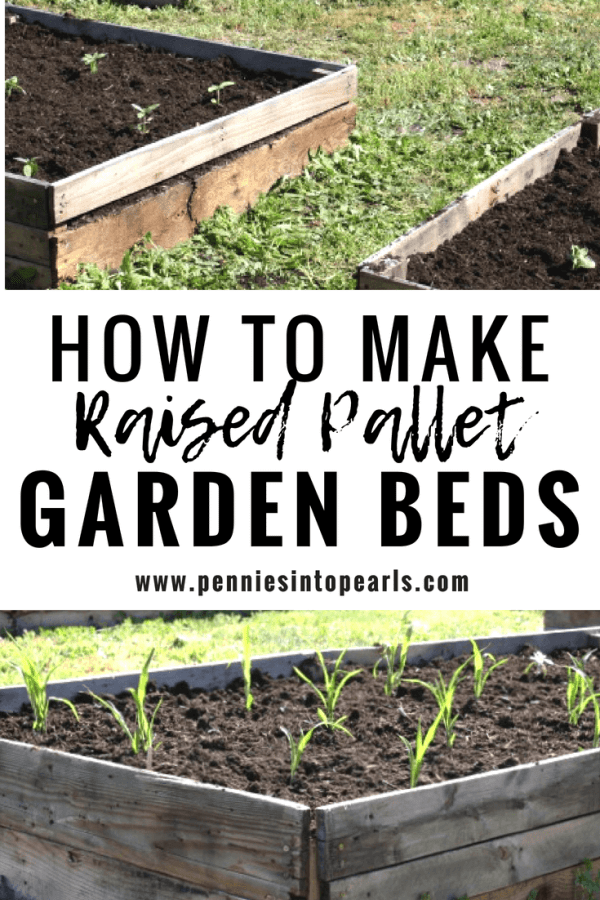 I love these elevated garden bed ideas! These garden bed design was cheap and easy since we used free pallets. You have to click through to the post to get the free plans!