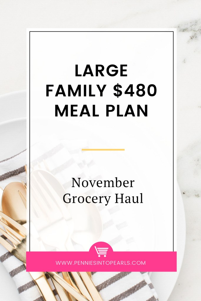 When you meal plan for a large family it's easy to go over budget. Here is how you can meal plan on a budget for a large family and still eat really tasty food that everyone in the family will love.