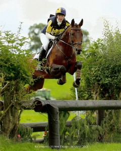 Z Concorde 2003 - Sport Horse Stallions - Horse Trials Cross Country