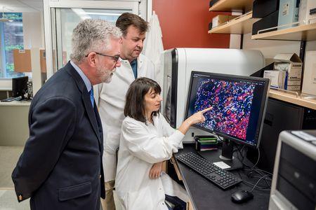 Dr. Bernie Fox of the Providence Portland Cancer Institute