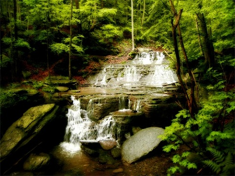 Visit PA Attractions On Your Vacation In Tioga County PA