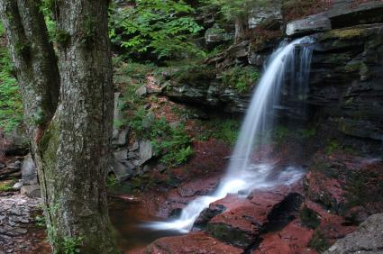 Northeast PA Mountains Region Directory of State Parks
