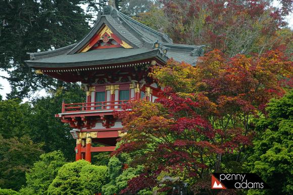 Temple Gate Japanese Tea Garden Golden Gate Park San