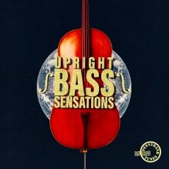 upright_bass_sensations2