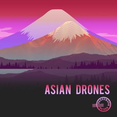 PNBT 1143 ASIAN DRONES