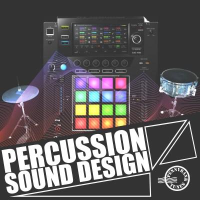 PNB 1156 PERCUSSION SOUND DESIGN